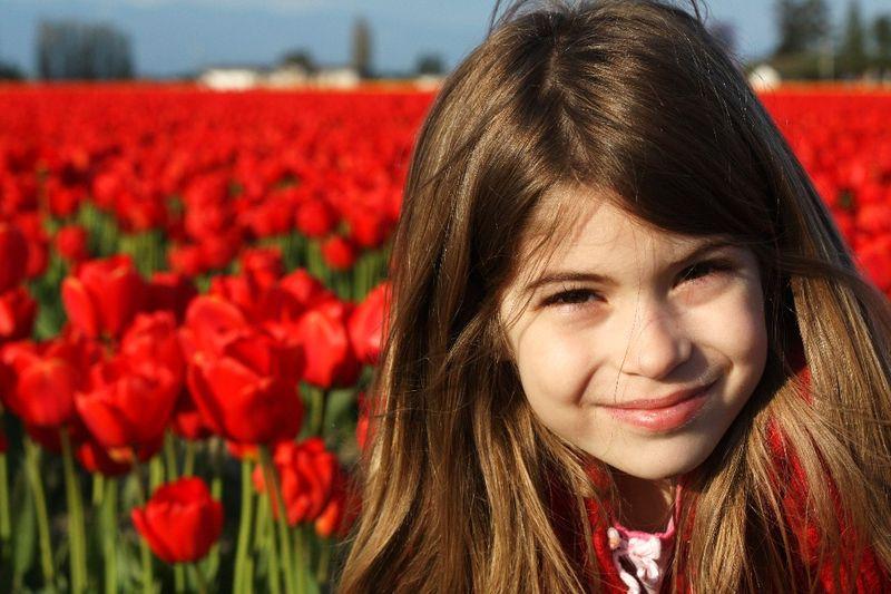 Ella Tulips red