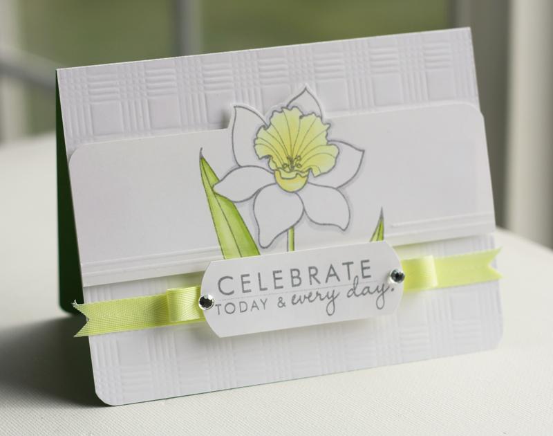 Celebrate-Daffodil