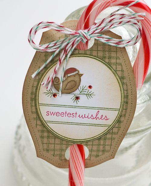 Penguin-cuteness-treat