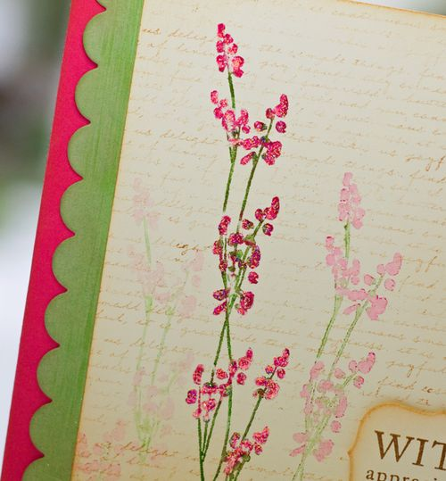 Pink-spring-detail